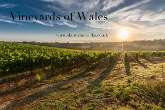 Vineyards of Wales