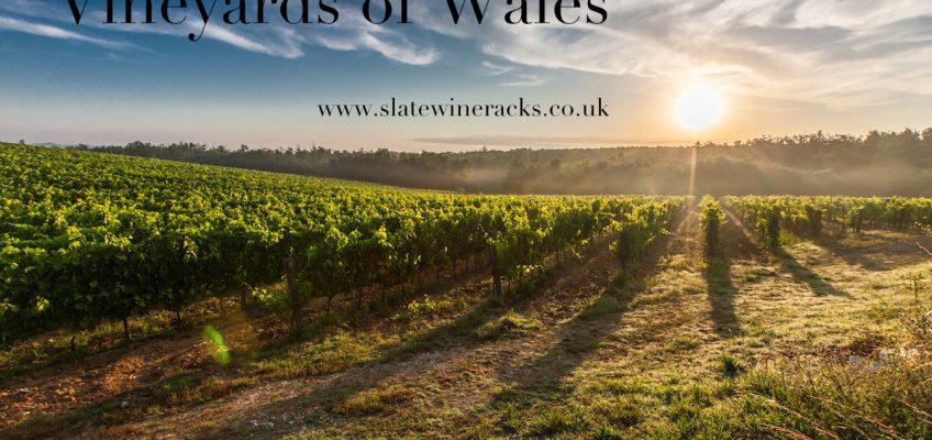 Vineyards of Wales