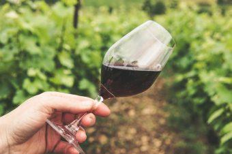 Wine Days 2021